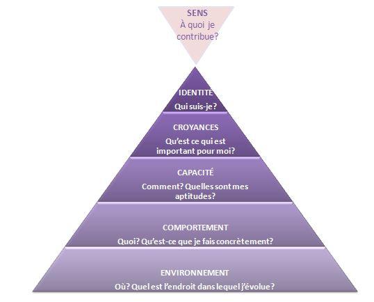 Pyramide des niveaux logiques - Robert Dilts.JPG